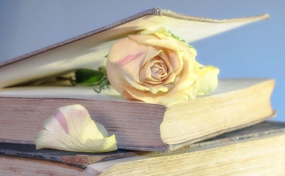 Un livre une rose ...