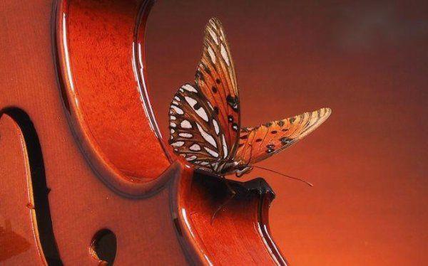 """Défis n °227 : Thème  """" Symphonie """" et où aux choix """" Liste de mots """""""