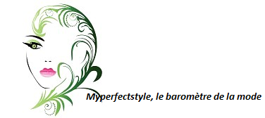 Myperfectstyle.net, 1er site web collaboratif en Afrique