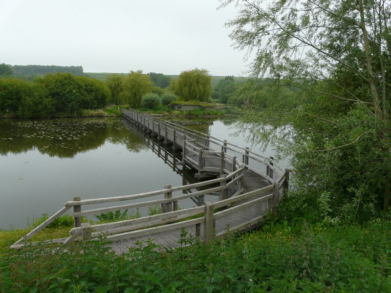 Marais des Carvins
