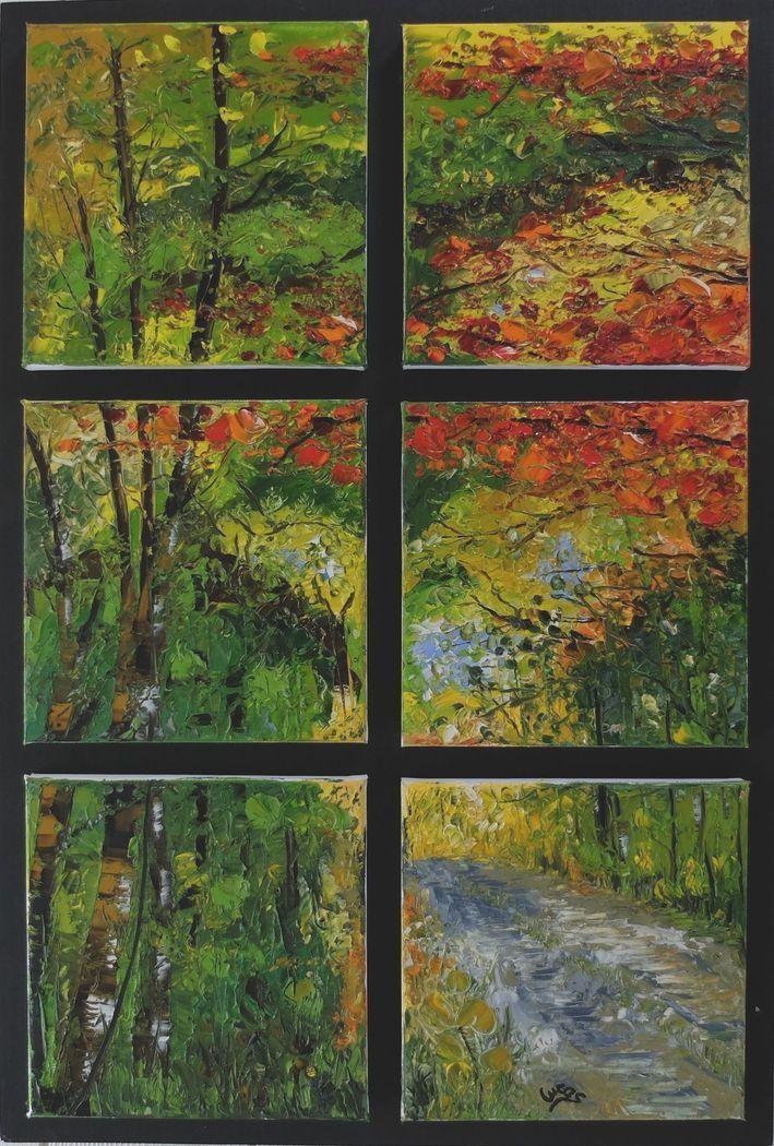 Fenêtre sur forêt 6  x  20x20