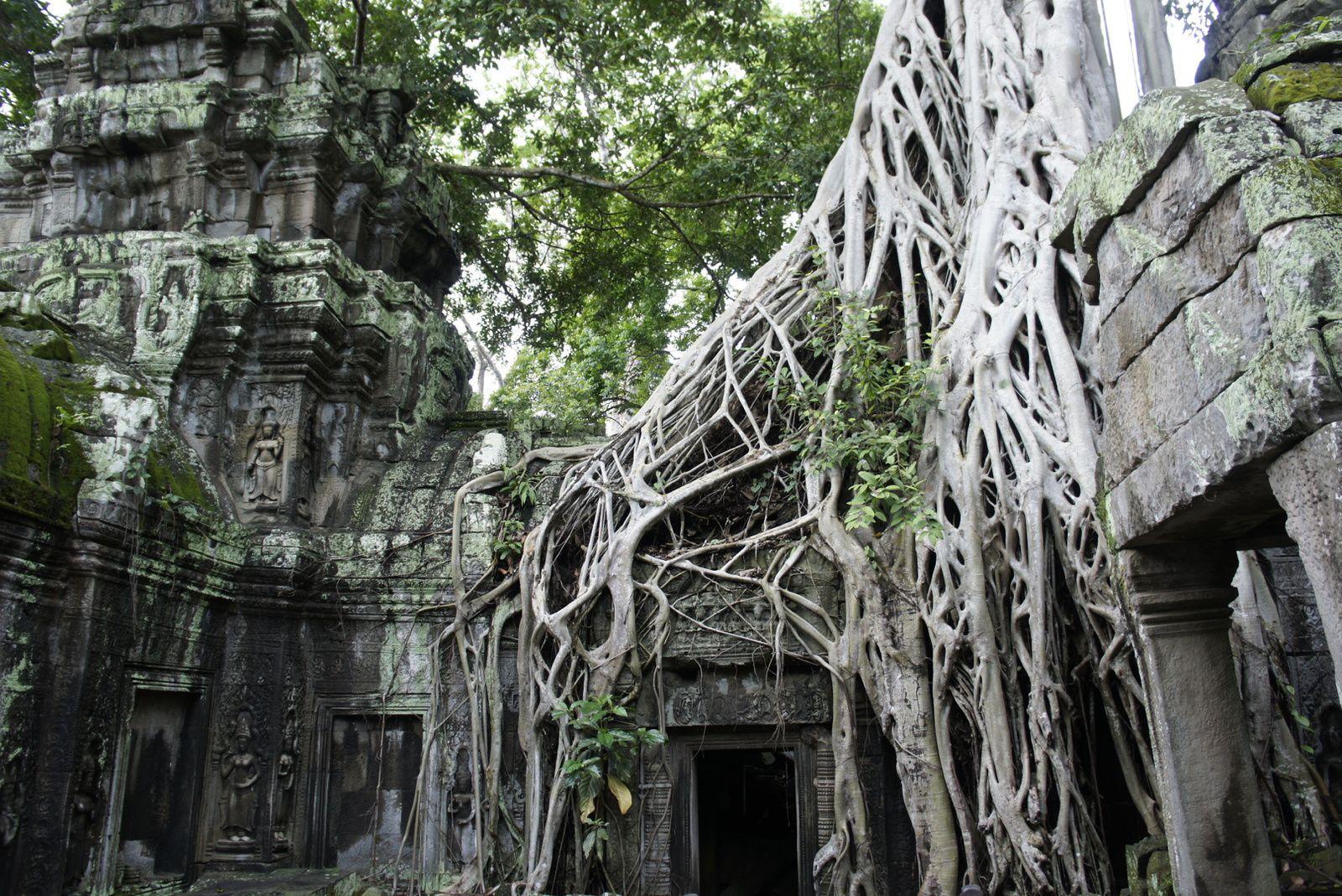 carnet de rencontres cambodge
