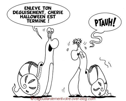 05 Stéphane