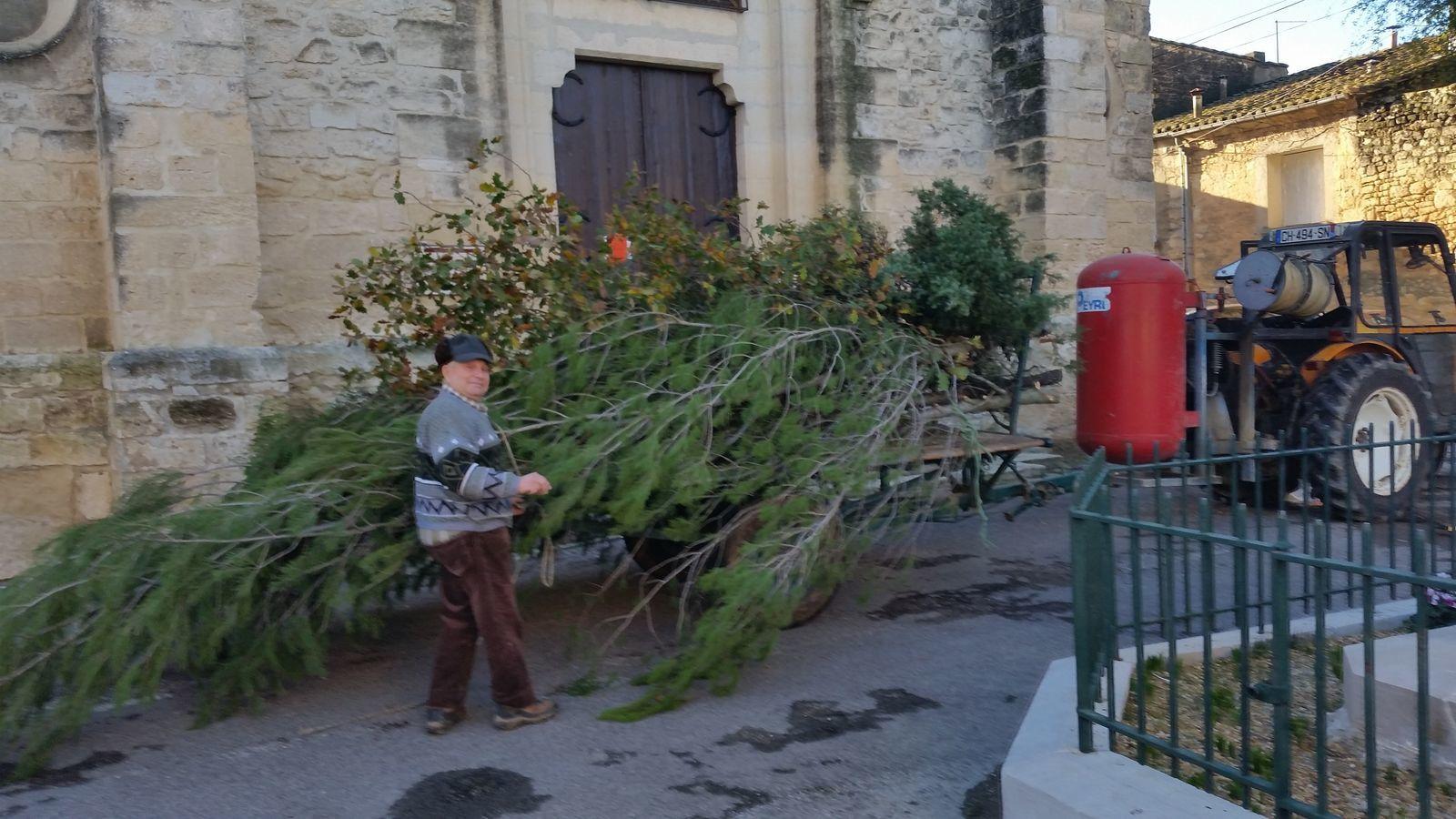 L'histoire de la crèche commence avec André qui apporte sur la remorque de son tracteur les végétaux récoltés dans la garrigue et les bois qui serviront de fond de décor à la crèche.