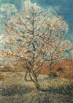 Peach Tree in Blossom, Vincent van Gogh