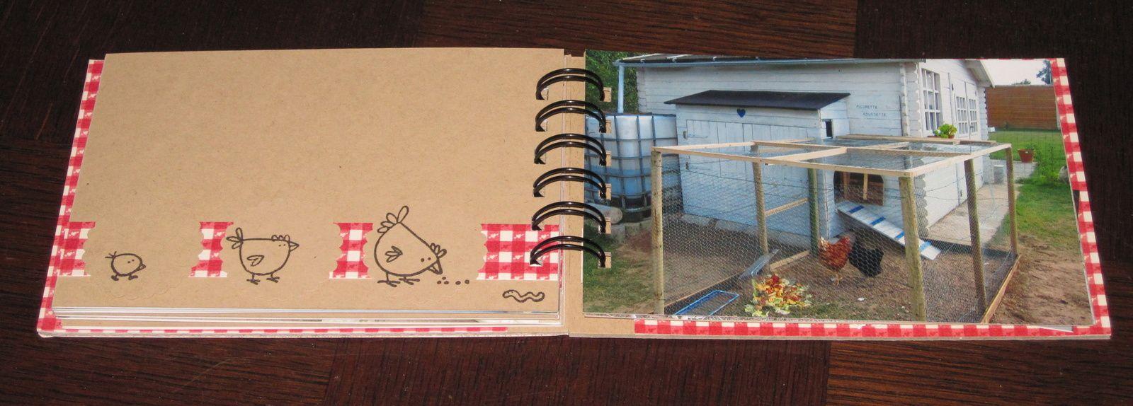 Mini album sur nos poulettes