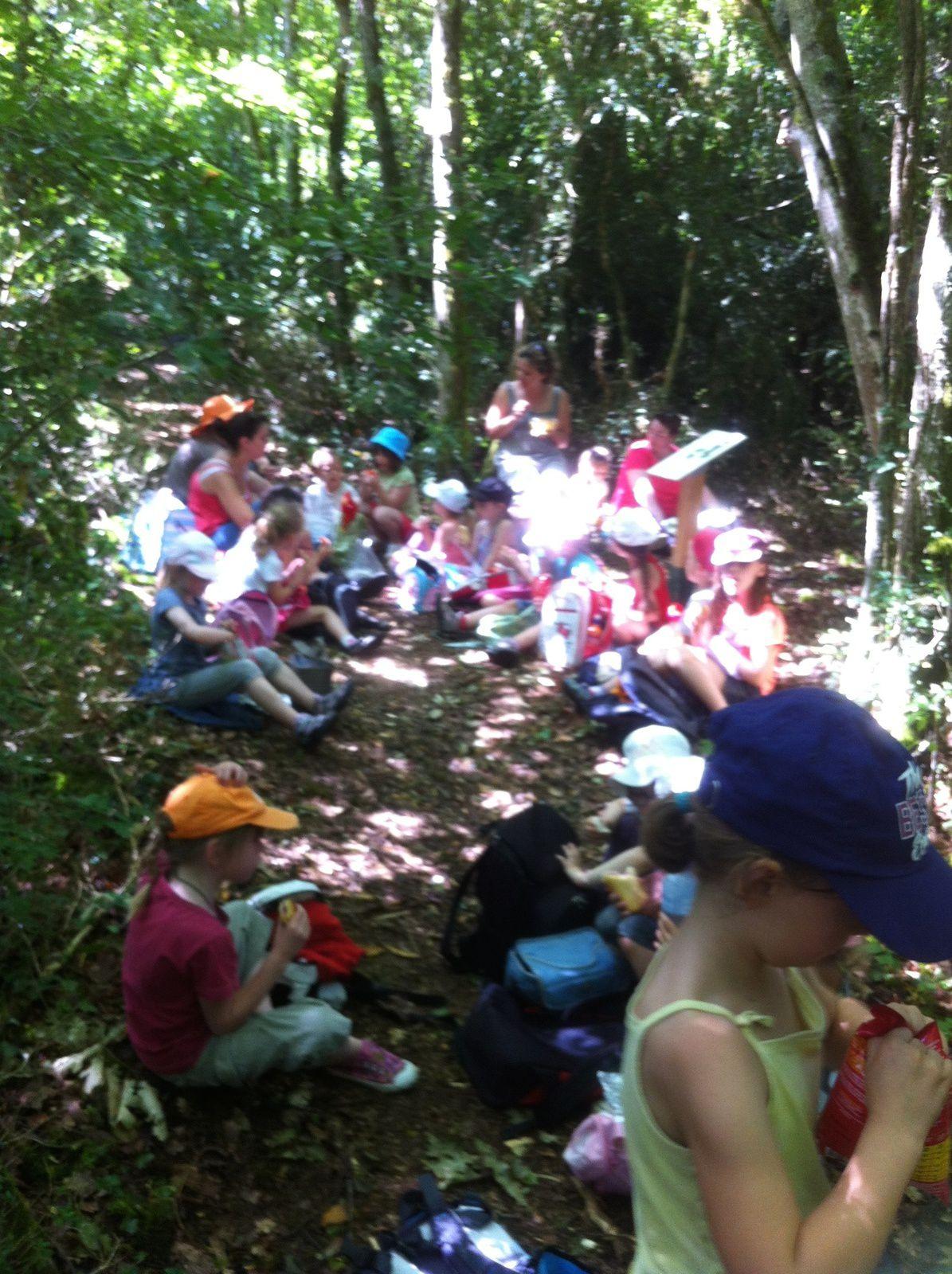 * Randonnée au Bois de La Roche à Salornay