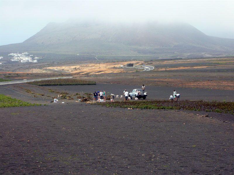 A côté du point de vue, une famille ramasse ses pommes de terre... si si, dans ce champ de sable !