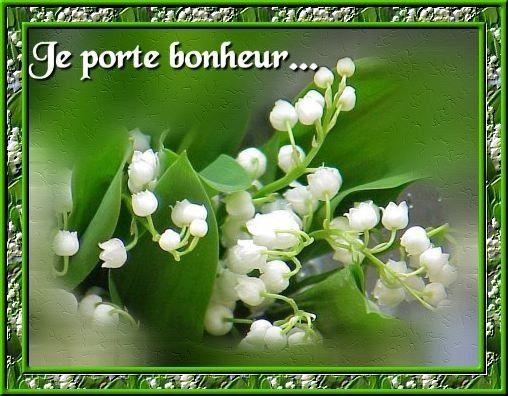 MUGUET de MAI, le PORTE-BONHEUR