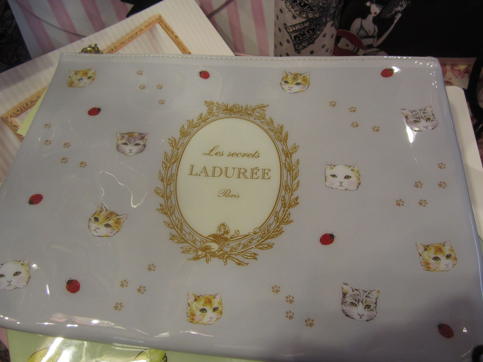 POCHETTE Collection CHAT LES SECRETS LADUREE