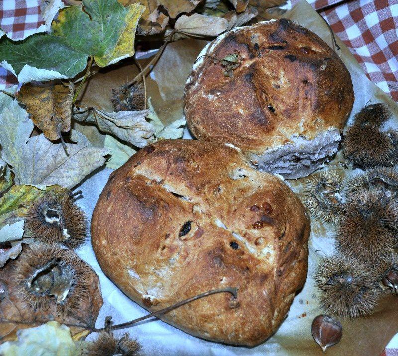 MTC n. 34: la cucina del bosco- il Pan Nociato
