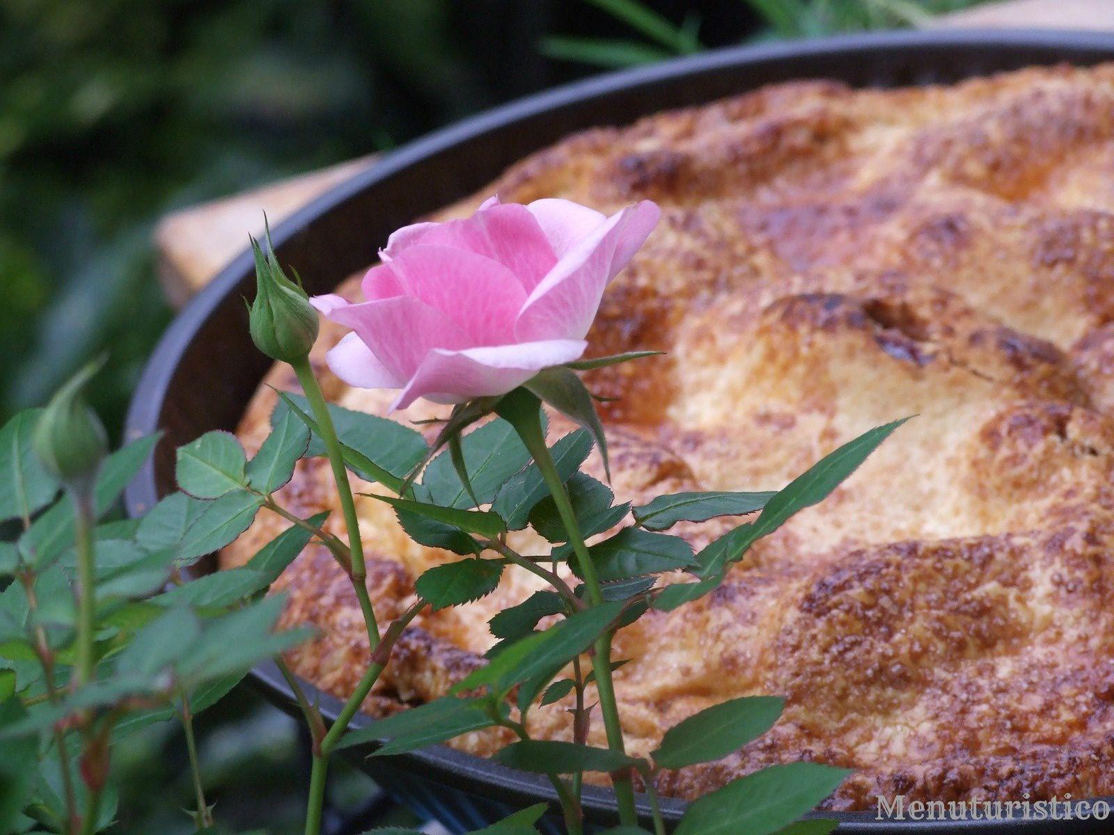 &quot&#x3B;La torta di mele perfetta&quot&#x3B; per lo Starbooks di Gennaio