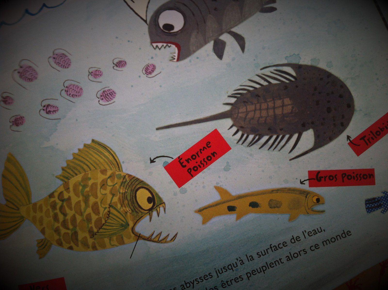 Chut les enfants lisent #58 L'incroyable histoire de la vie sur la terre