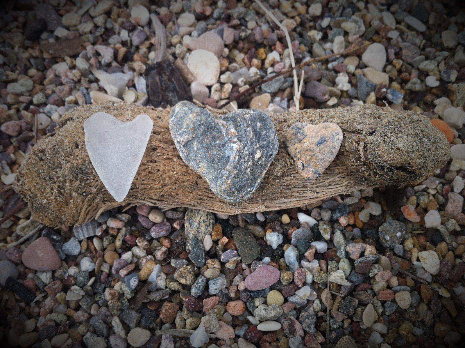 L'amour est dans la nature