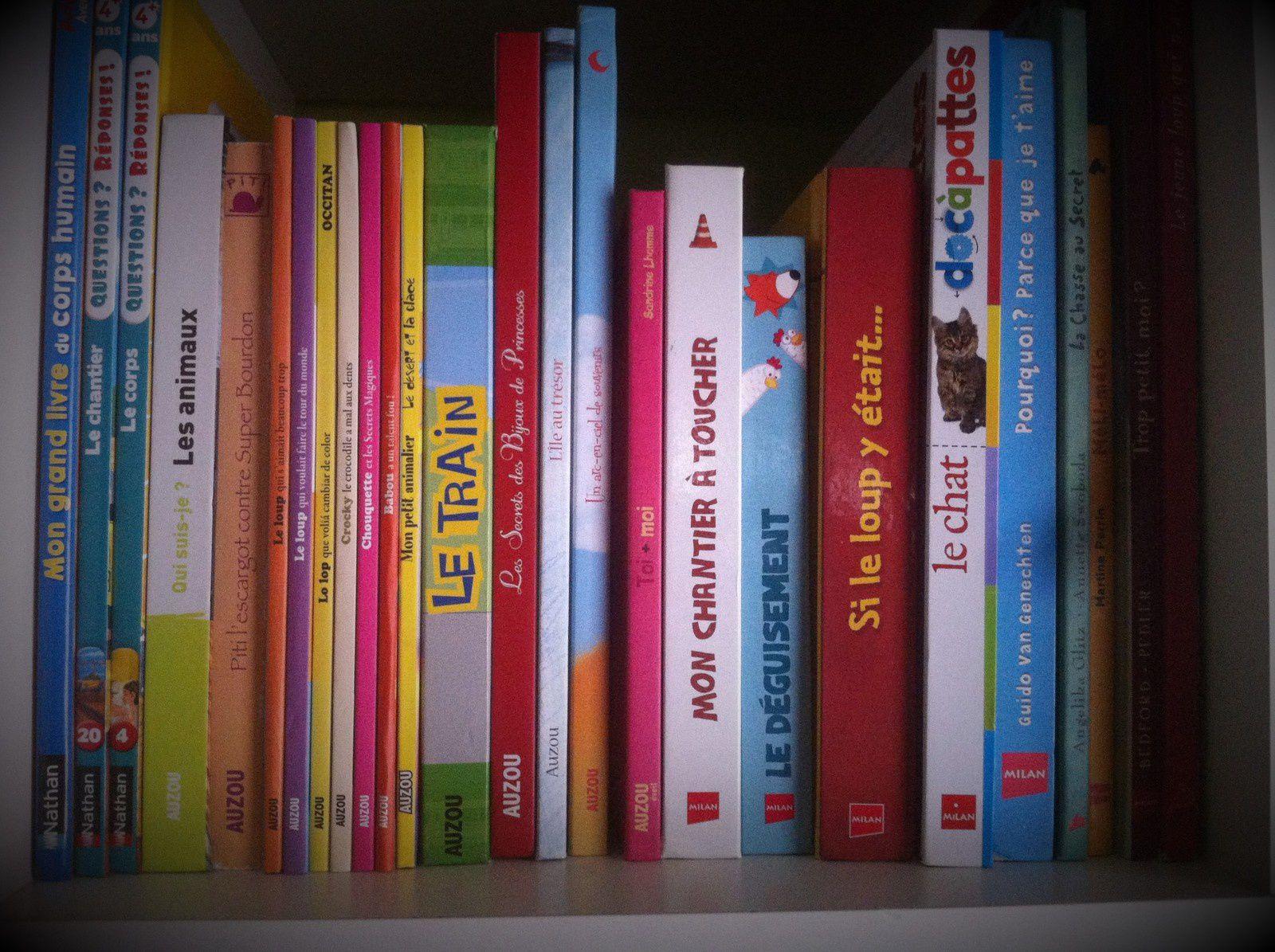 La bibliothèque des enfants