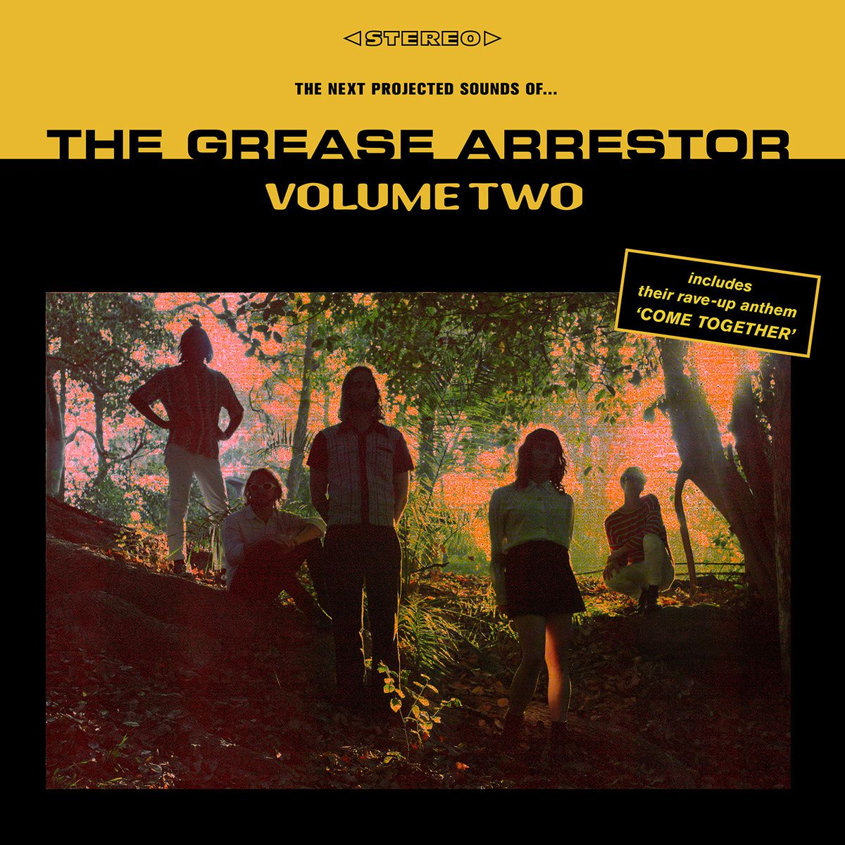 THE GREASE ARRESTOR - Volume two (2015)