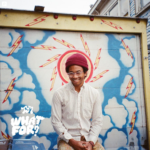 TORO Y MOI - What for (2015)