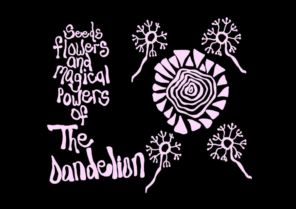 THE DANDELION - Seeds Flowers and Magical Powers of the Dandelion (2015)
