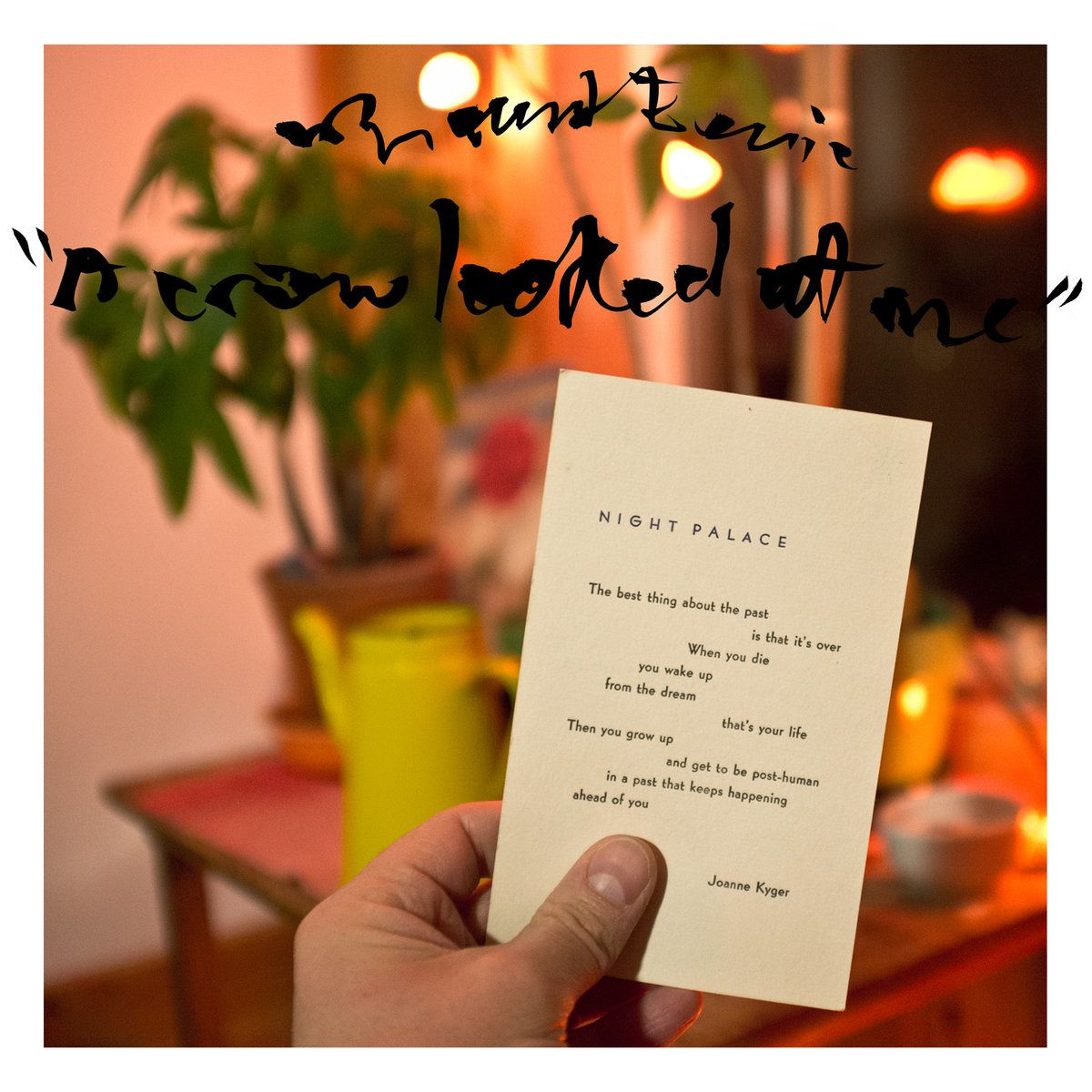 MOUNT EERIE - A Crow Looked At Me (2017)