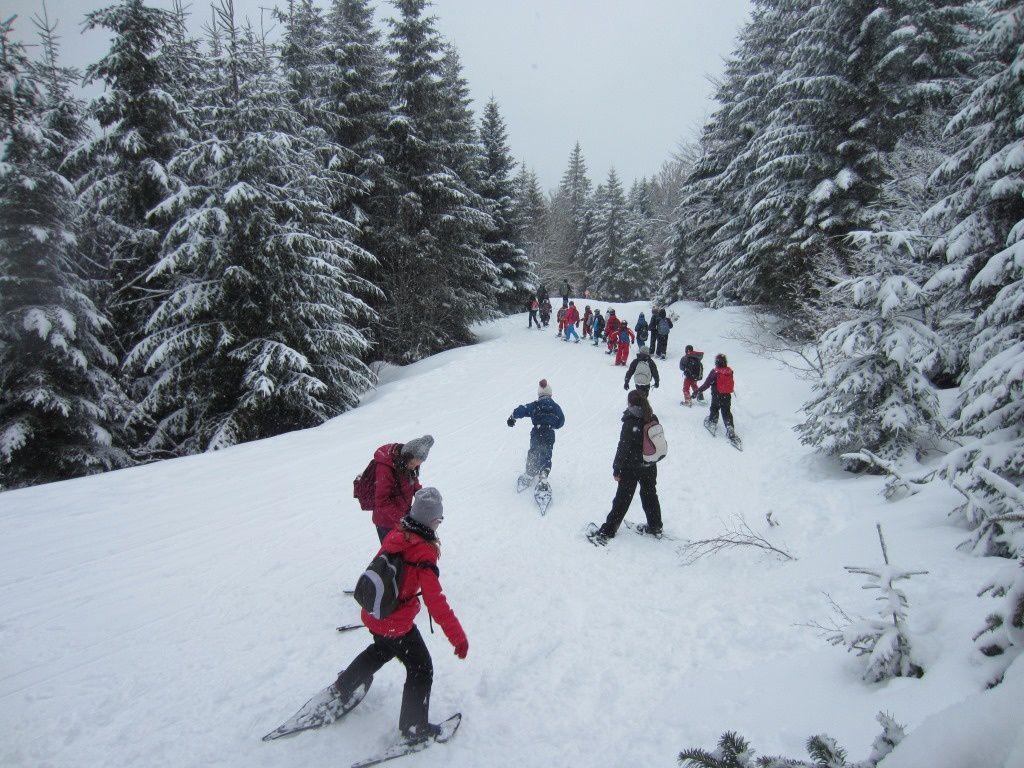 Voyage en Auvergne - journée du jeudi