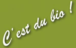 Après François de Rugy, patron des députés écolos, Jean-Vincent Placé, patron des sénateurs écolos, se place auprès de François de l'Elysée en quittant EELV