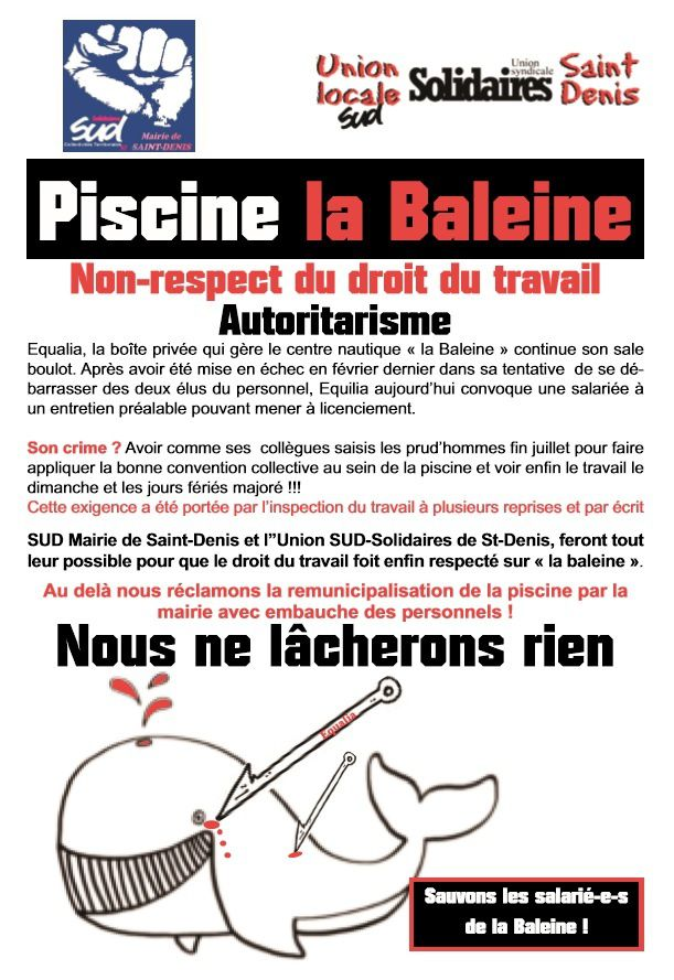 Piscine la baleine non respect du droit du travail for Piscine baleine saint denis