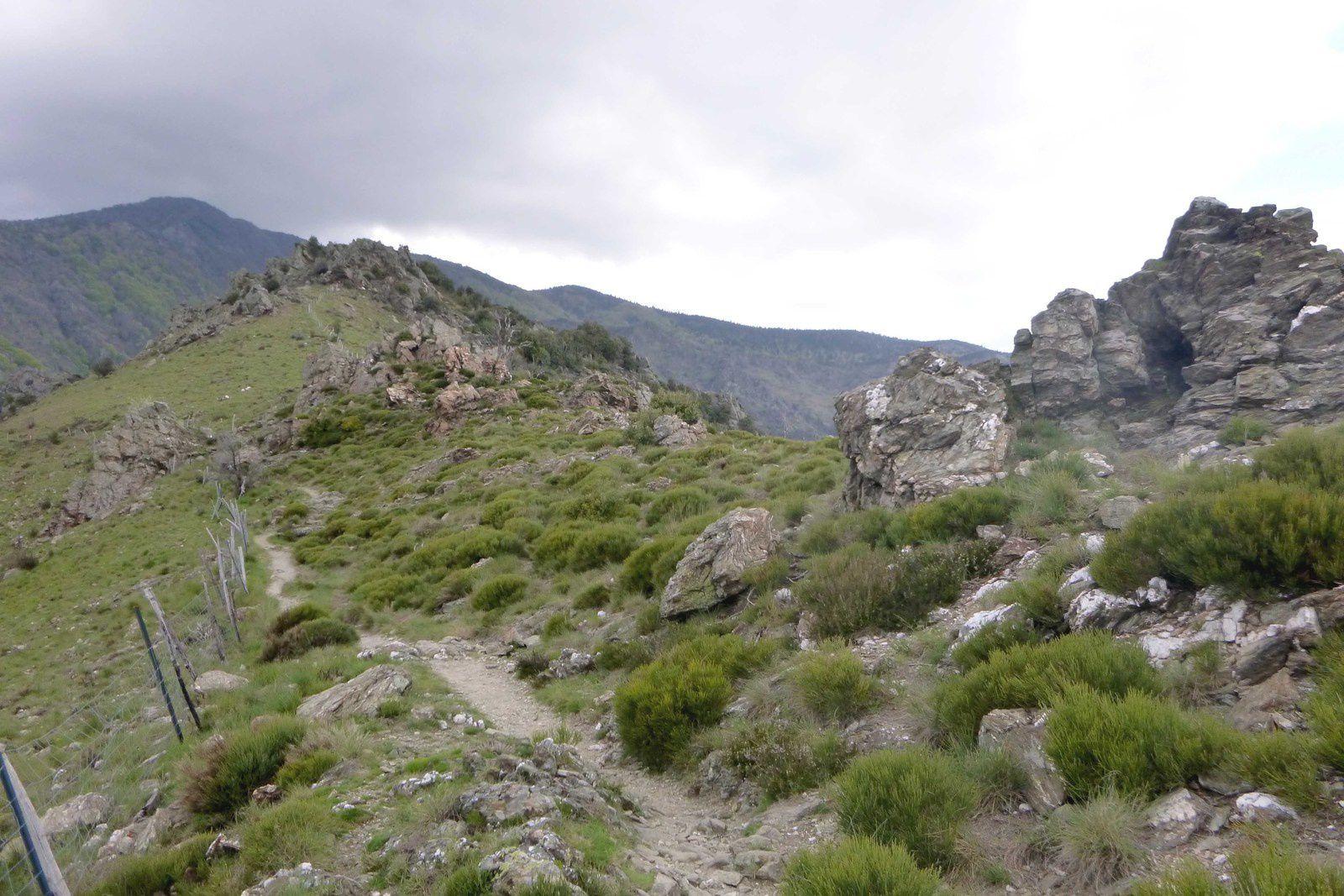 Les 4000 Marches: Valleraugue-l'Aigoual et retour par Aire de Côte
