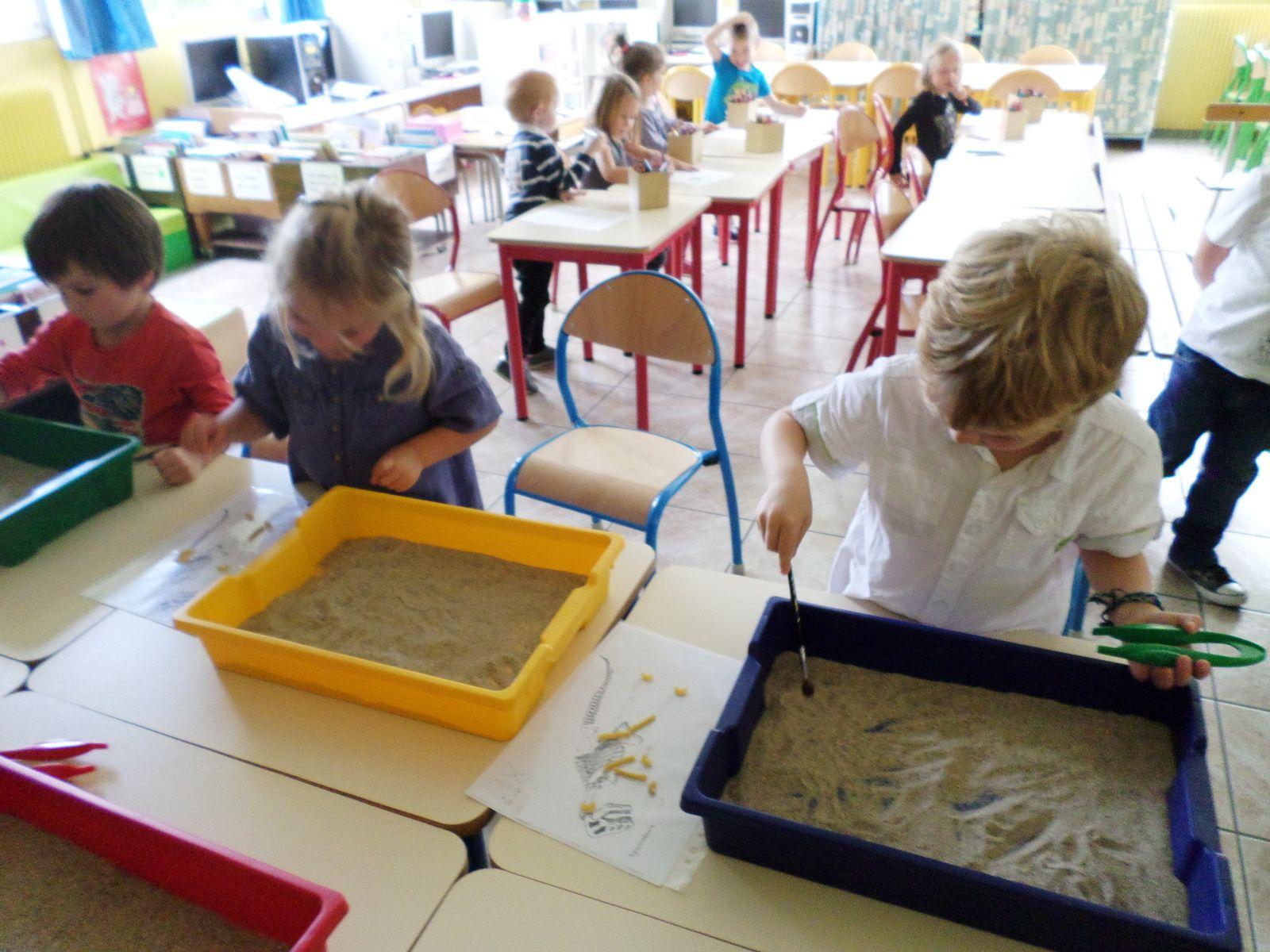 Les paléontologues de la classe des grands