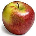 Gros plan sur ...les pommes