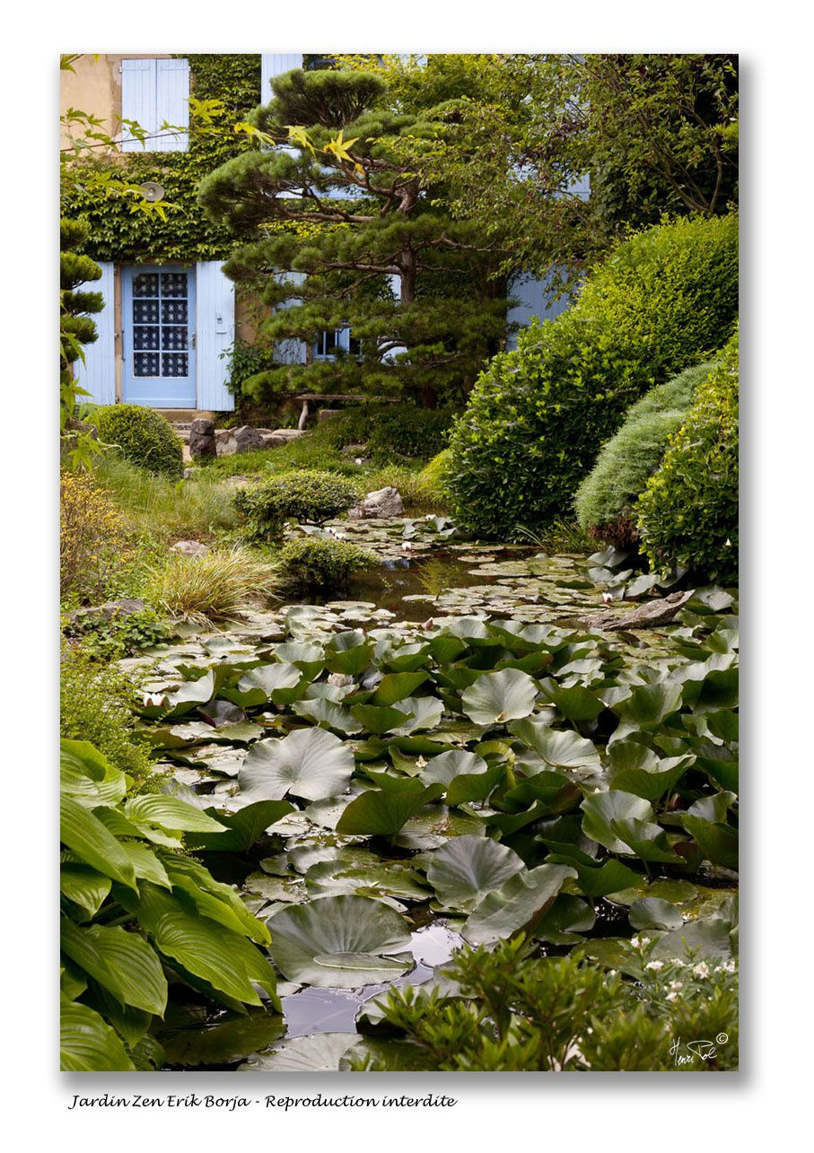 Album au jardin zen d 39 erik borja henri pol photographe for Le jardin zen beaumont monteux