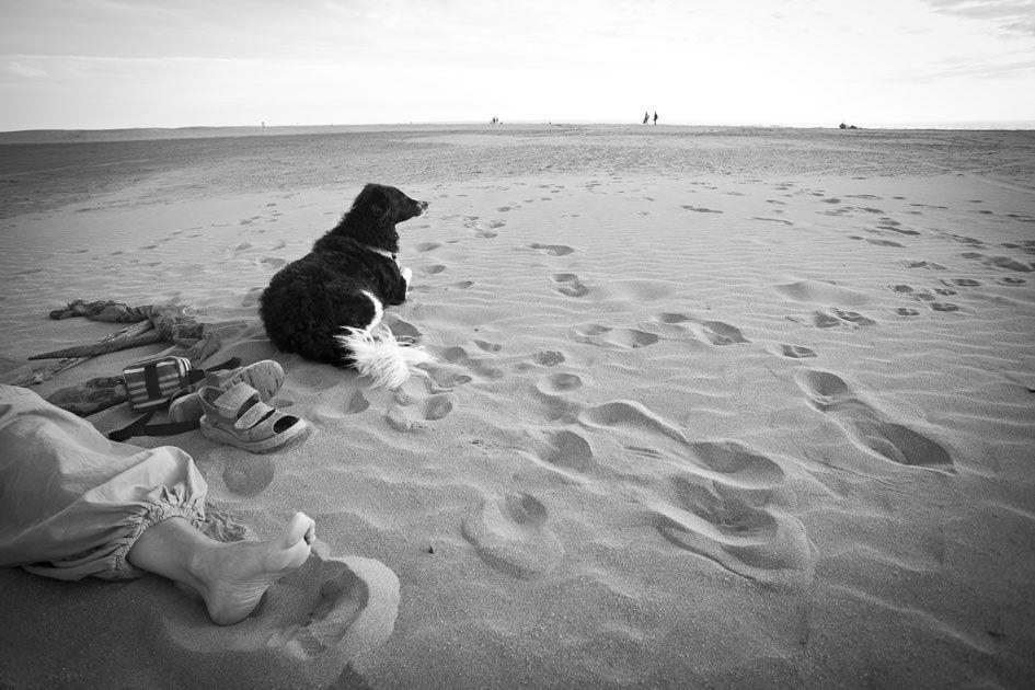 première chose: la plage. Vaste et infinie à l'Espiguette