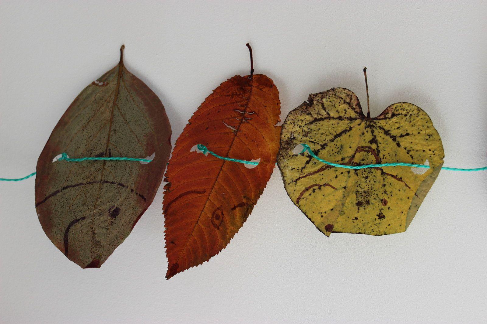 Guirlande de feuiles d'automne