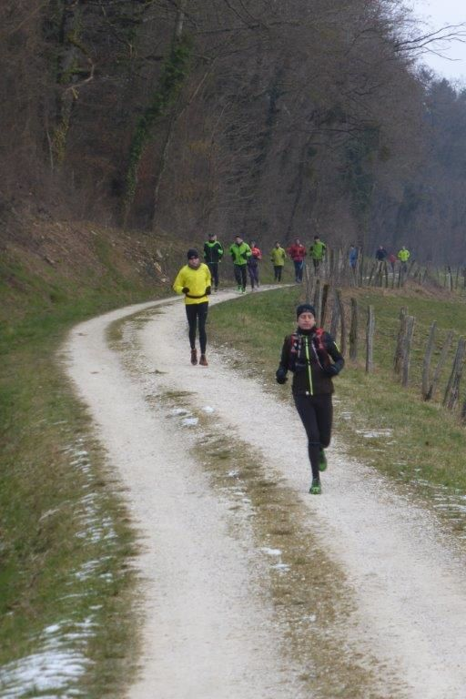 Photos de la Reco du trail des Monts de Gy 2015