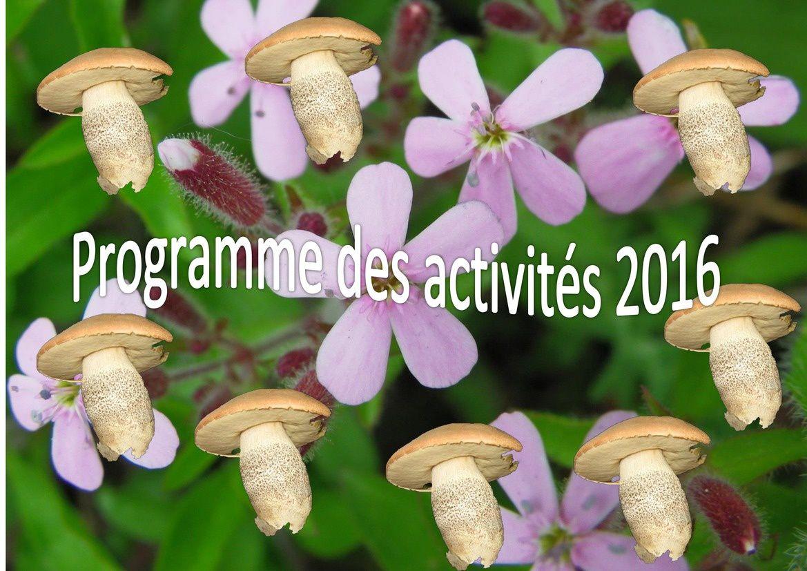 Programme des activités 2016