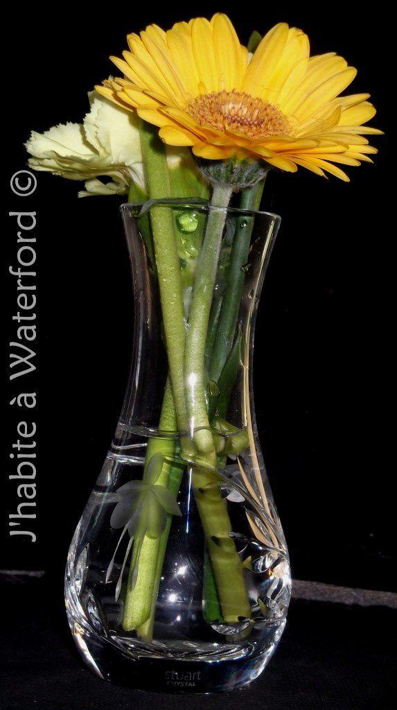 Waterford Crystal: Renaître des Cendres du Passé