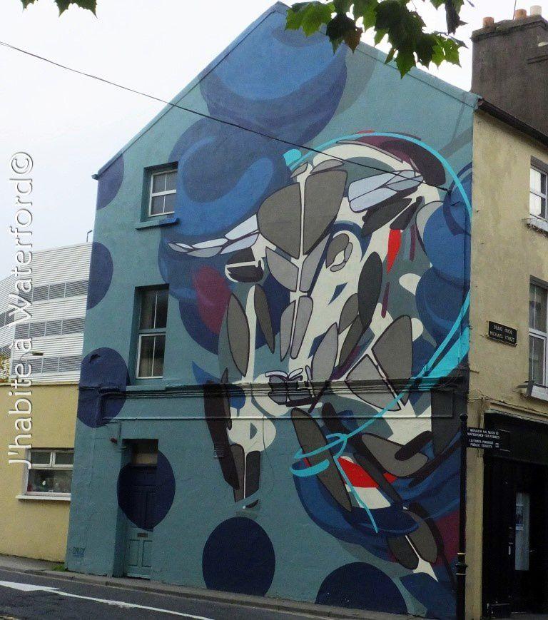 Art de Rue : Waterford Walls Art Project