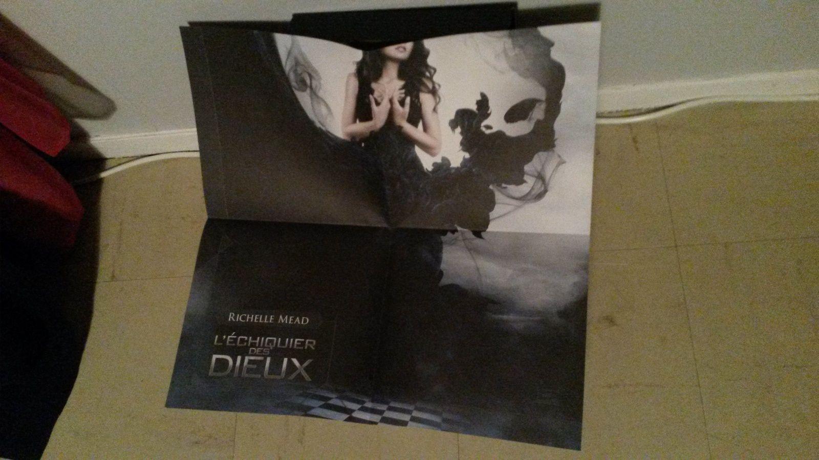 L'Echiquier des dieux, concours remporté sur Vampire Academy France