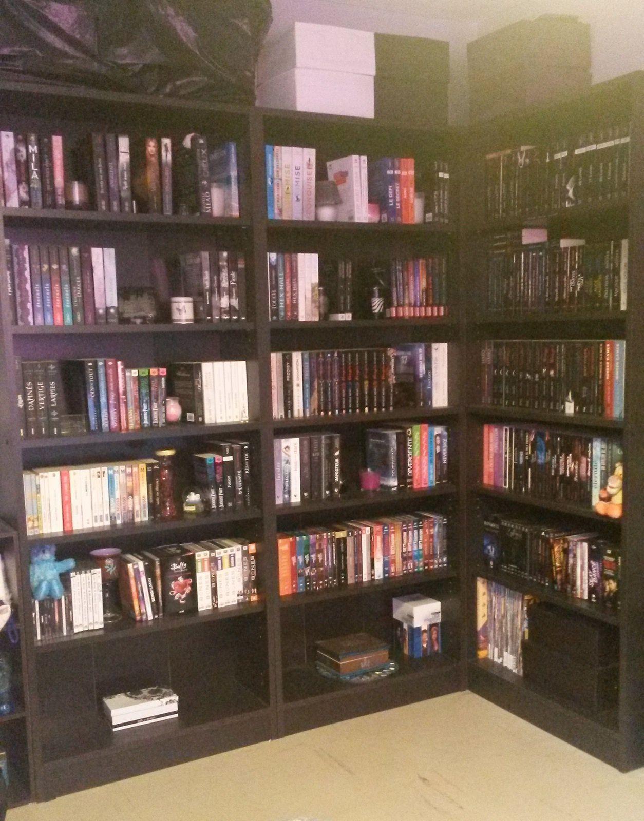 Ma bibliothèque, en images !