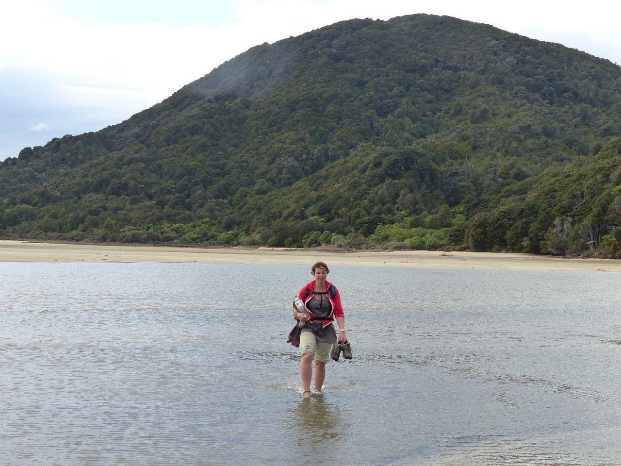 De  Kaikoura à Picton : Des animaux marins, du bon vin, de la rando et toujours des paysages incroyables !