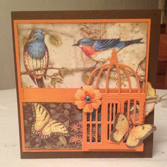 Carte d'anniversaire Oiseau et papillons