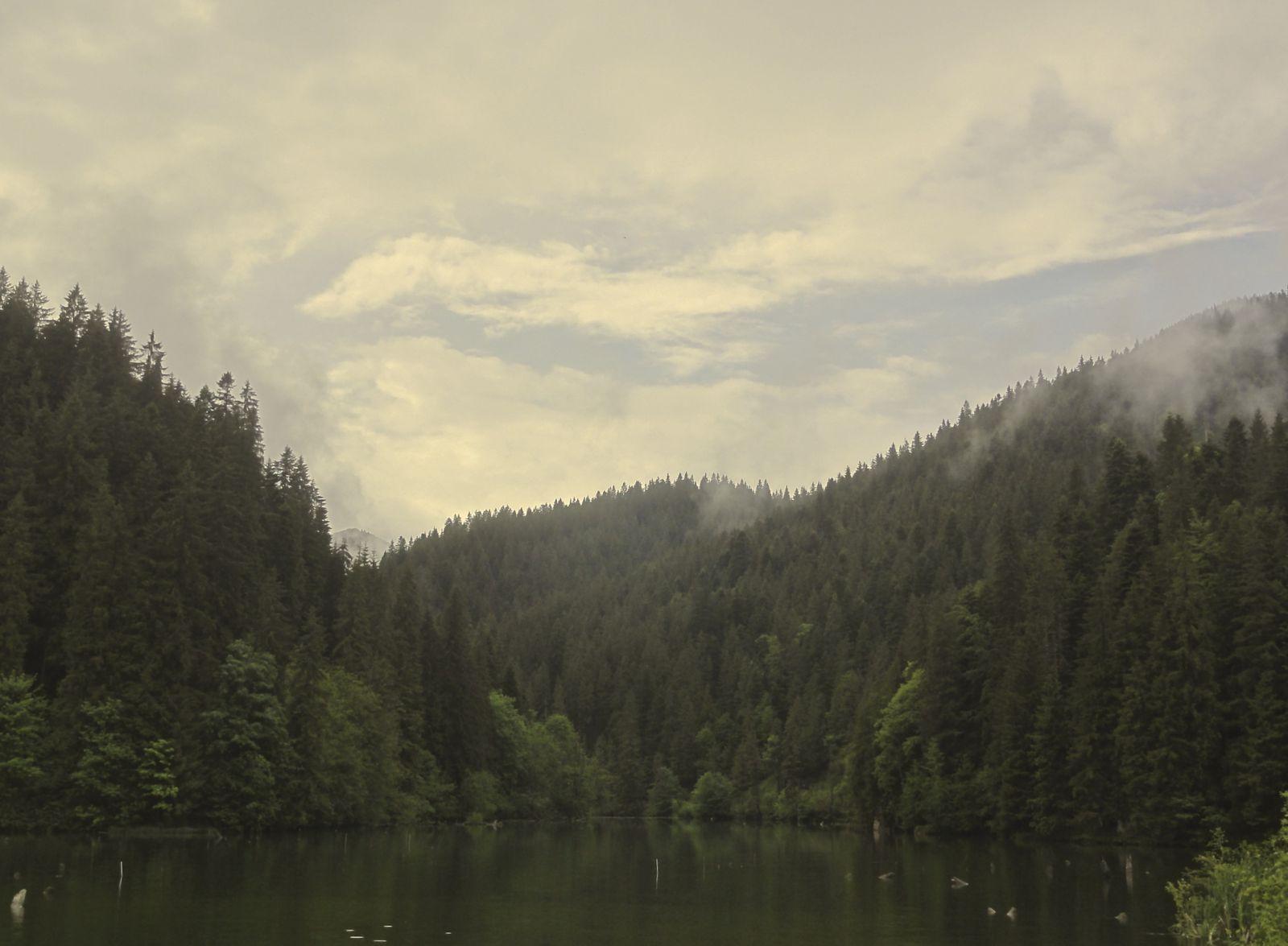 Lacu Roșu