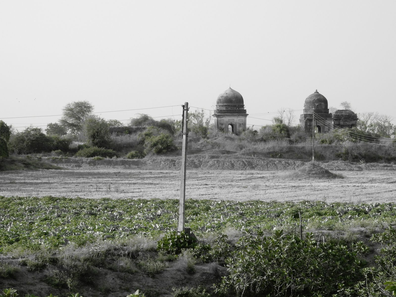 Tombs, Bhuranpur - Avril 2014