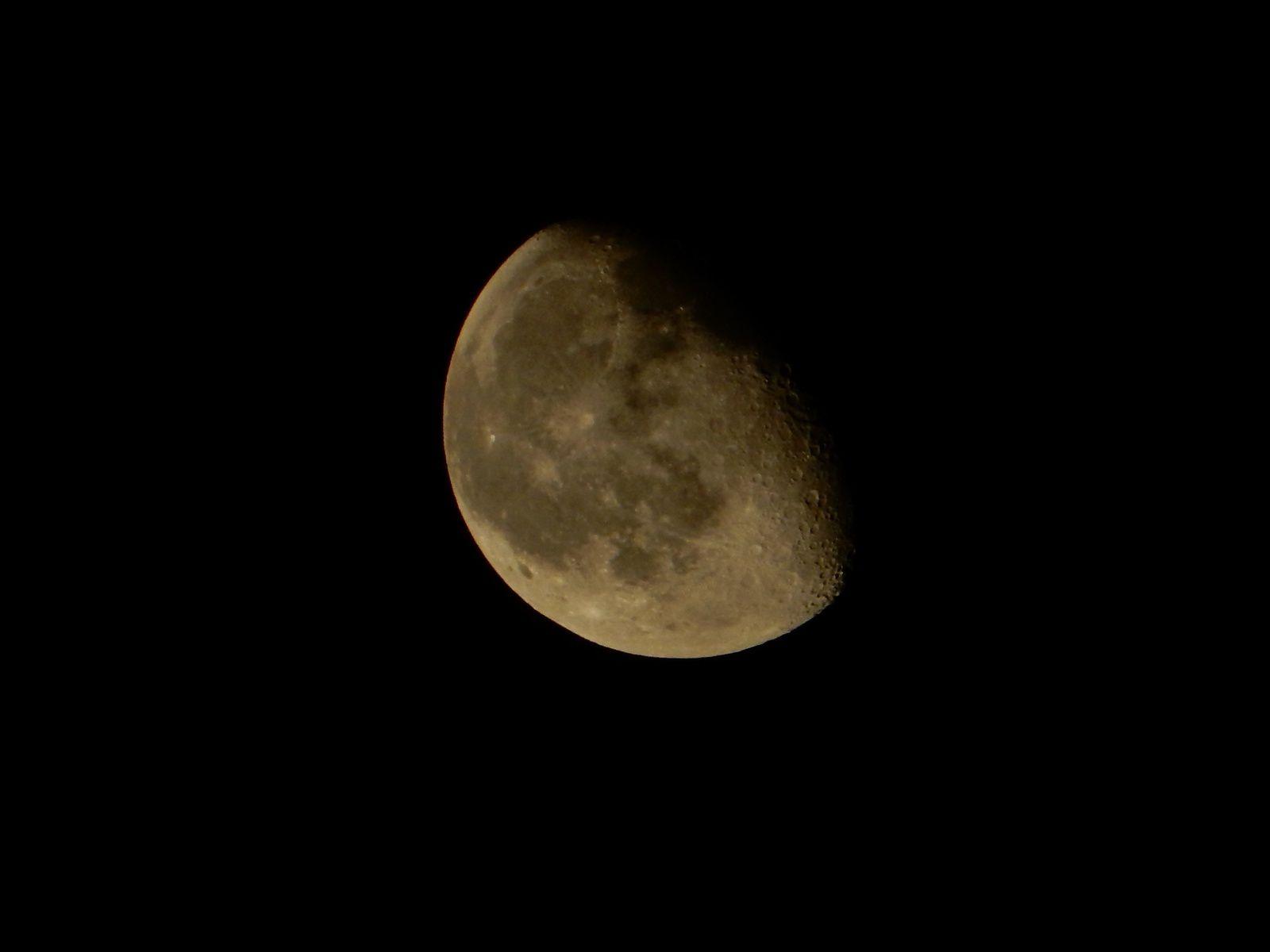 Moon, Delhi - 20 Avril 2014