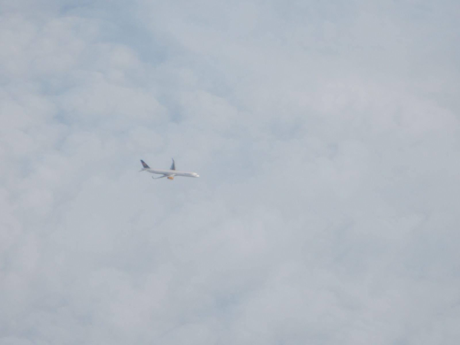Plane - Août 2014