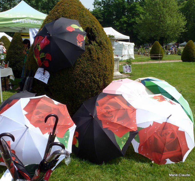 Des roses en ombrelle,