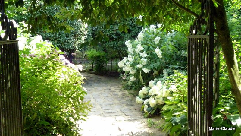 Le jardin Agapanthe (suite et fin)