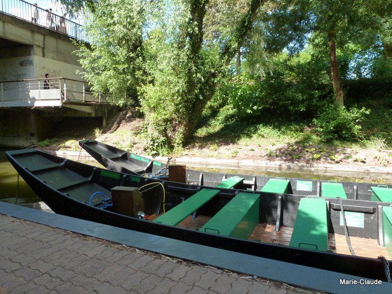 Ces barques à fond plat, accueillent 12 visiteurs,