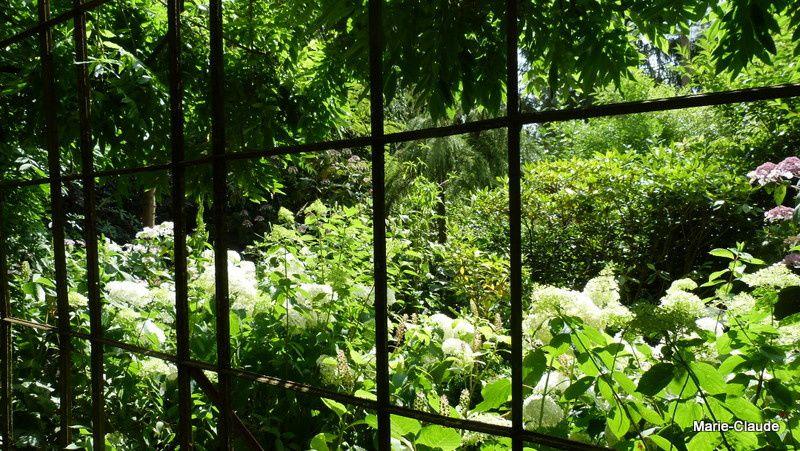le jardin agapanthe suite un p 39 tit coin de nature. Black Bedroom Furniture Sets. Home Design Ideas