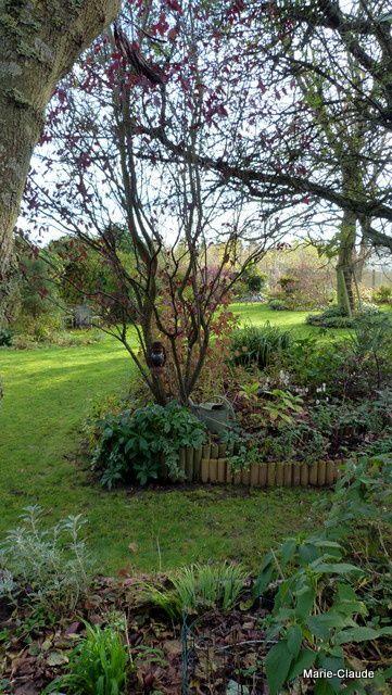 Les feuilles ramassées, le jardin paraît bien plus net, la maison aussi !