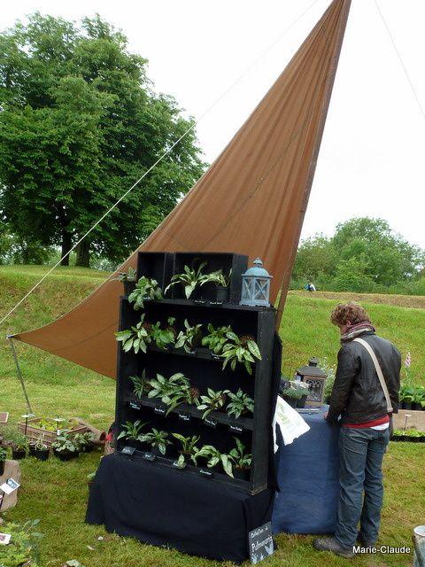 Les jeunes horticulteurs du 'Jardin du beau pays' exposent une collection de pulmonaires, un stand original